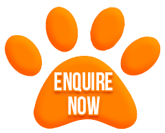 Enquirenow